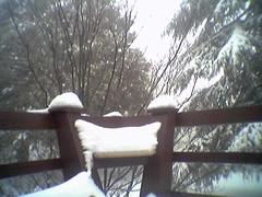 Palomar snow