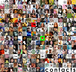 flickr contacts - January 9, 2005 {notes} | by striatic