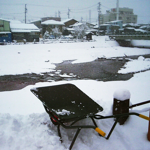 wheelbarrow at the river