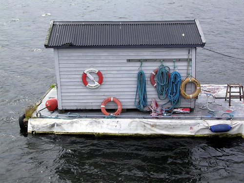 A Shed by the Water | by plindberg