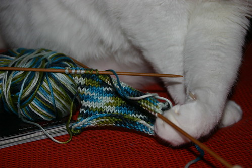 Sam has a hard time with these tiny needles.  He's not sure what this should be yet.