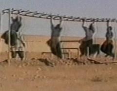 al Qaeda 2