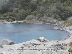 rotorua volcanic pool