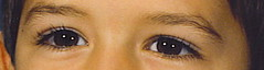 eyes.final