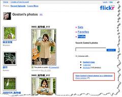 flickr_31