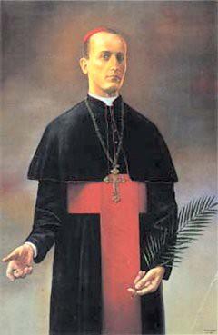 Kardinaal D