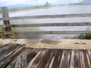 Steam at Hot Lake