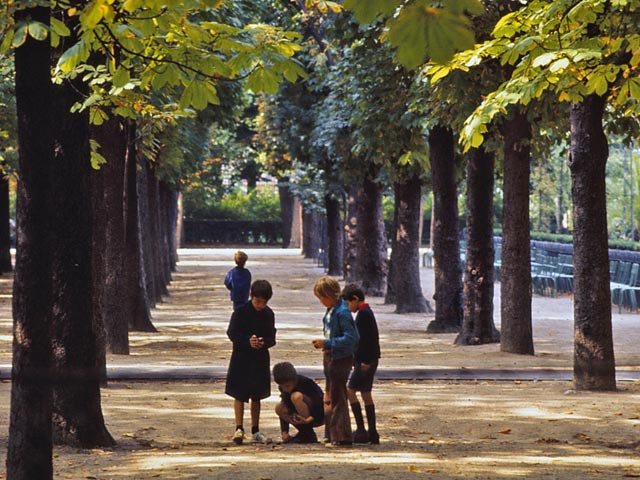 Boys Finding Chestnuts in the Luxembourg Gardens
