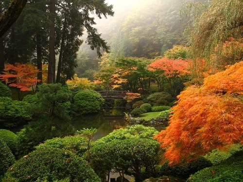 oregon portland landscape japanesegarden fallcolor washingtonpark interestingness20 i500 abigfave explore29oct2006