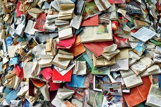 Alicia Martin: Biografias - Cascade of books