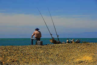 Fishing in New Zealand | by thinboyfatter