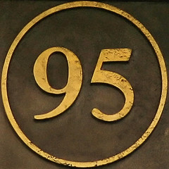 95   by Leo Reynolds