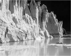 South Crillon Glacier, Washburn | by Snyder Alison