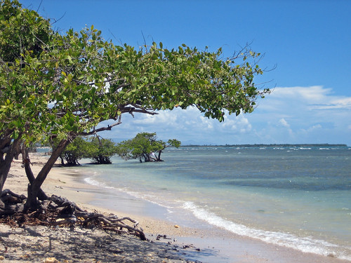 paisajes island landscapes puertorico tropical isla oquendo