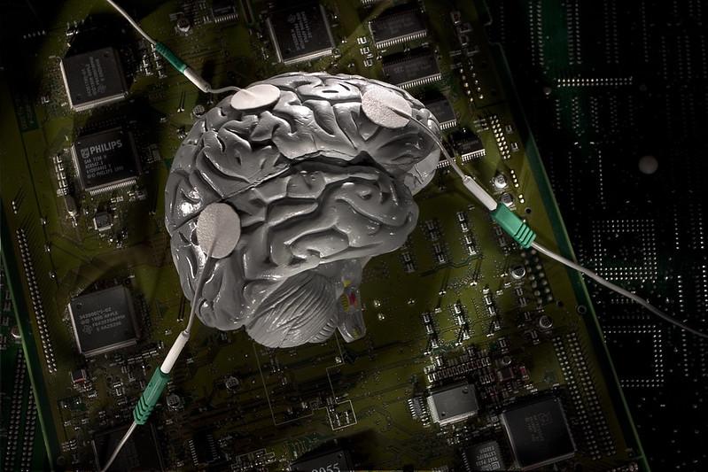 brain v.1