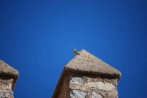 Lost in blue, Mallorca | by blanes_jm