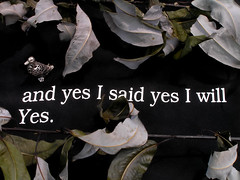 and yes I said yes | by It'sGreg