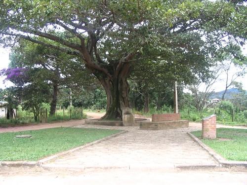 Praça da Gameleira, Glaura - MG | by William Carvalho - Glaura