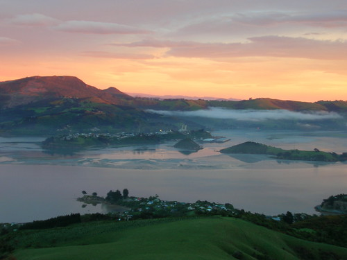 newzealand garden myfav nhs southisland dunedin larnach castlelarnach travelmeme