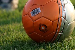 Soccer ball | by shawnzrossi