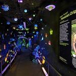 Richard T. Mamiya Science Adventure Center - Origins Tunnel