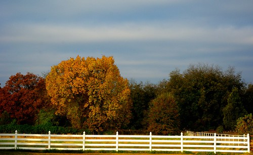 trees fall clouds fence landscape foliage vanburen arkansas