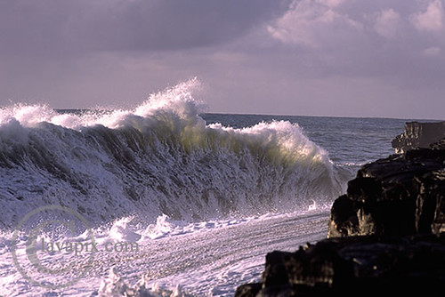 Giant Wave A309