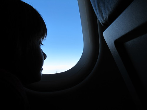 voar | by Rosa Pomar