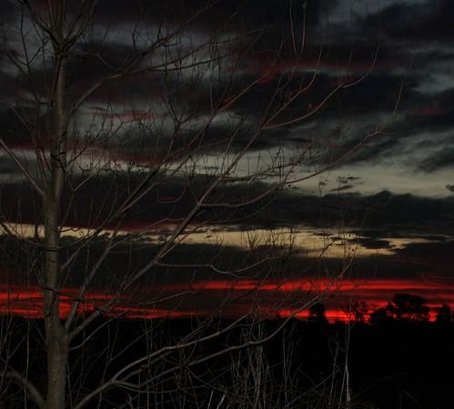 red tree nature sunrise ilovenature louisiana seasons flash experiment roadside mrgreenjeans gaylon gaylonkeeling
