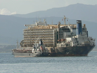 Almawashi - a huge livestock ship off Gibraltar | by amateur_photo_bore