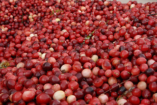 Cranberry's Anyone? | by Bruce Foster