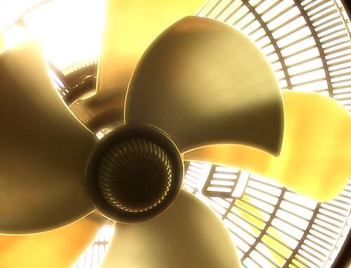 Backlit Fan | by ToastyKen