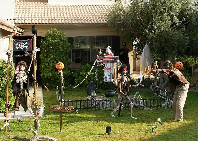 Our Yard. The nighbors find us odd...
