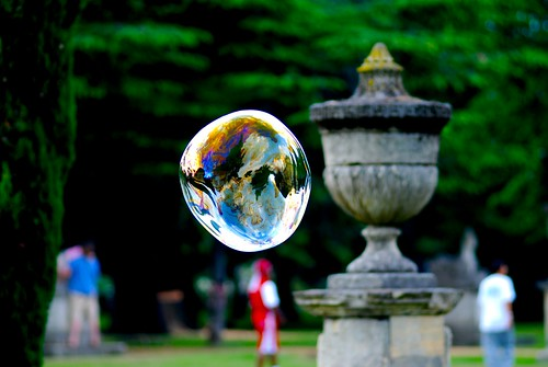 the world needs more bubbles