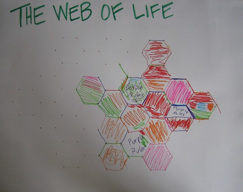 Web of Life Final Board | by eekim