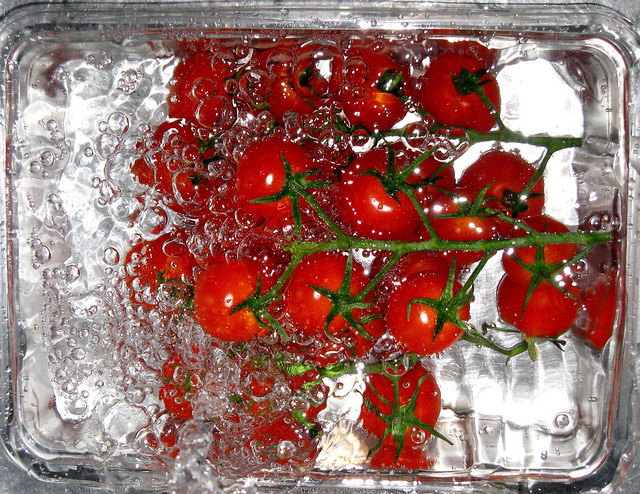 Washing tomatoes 1