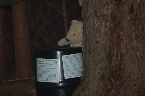We did a poor job of hiding our bear can   by Ketzirah & Art