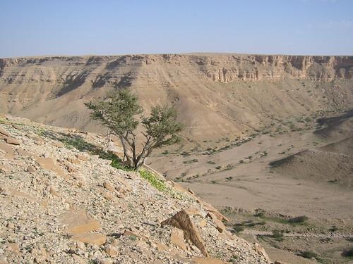 desert canyon saudi arabia riyadh wadi