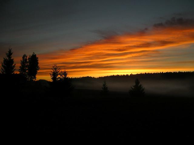 Sunrise & mist