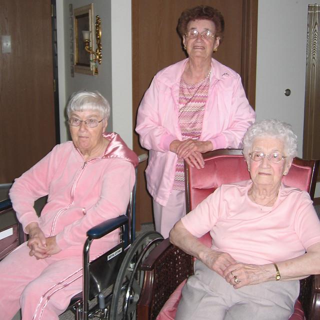 d2408 pink Meidinger sisters