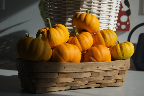 A basket of pumpkins | by pmarkham
