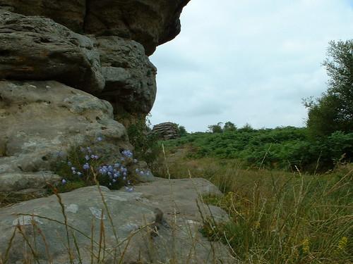 Bridestones on Moor (29/07/2005)