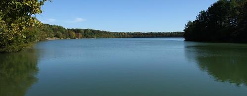 park trees lake water virginia oak grove chesapeake
