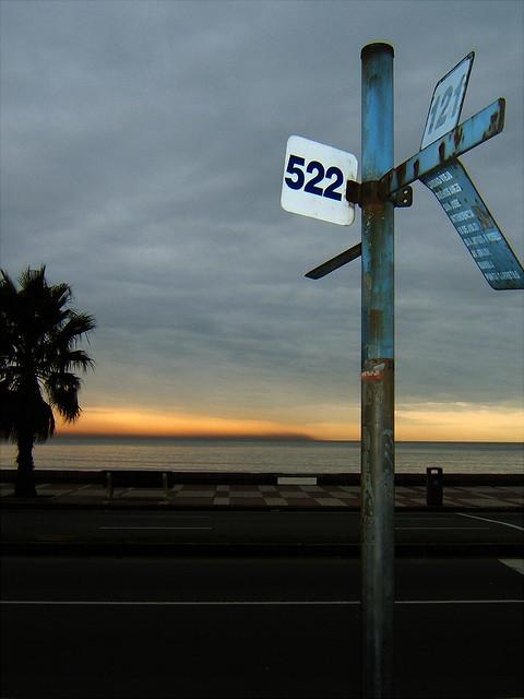 Bus stop at dawn