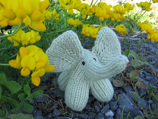 "little knit elephant | by ""penny"" was already taken"