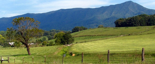 Mountain and Pasture scene - Seveir County, TN