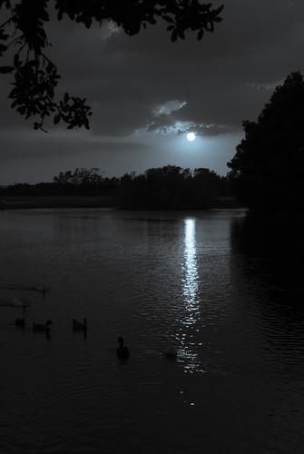 lake water pond texas d200 susnset tomball hooksairport