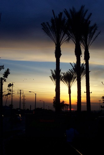 sunset cloud color palmtrees redlands