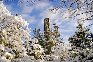 Snowy UBC | by p.m.graham