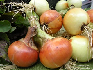 Beautiful Onions | by JMWriter